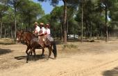 Spanien_Andalusien_Rocio_Wallfahrt_Pfingsten_Pferd_Pinienwald