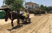 Spanien_Andalusien_Rocio_Wallfahrt_Pfingsten_Pferde_Dorfstrasse5