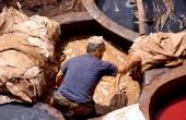 marokko-fes-gerberei-faerberei-arbeiter
