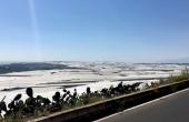 Spain,-Almeria,-Costa-de-Plastico_Gemueseplanagen