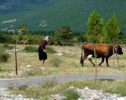 Shkodra, Thethi: Bike & Sightseeing durch den Thethi-Nationalpark (Tour 1)