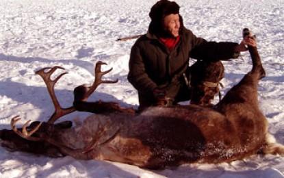 Kamtschatka, Esso: Rentier Jagd