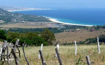 Costa de la Luz, Andalusien: TARIFA Landebahn, Valdevaqueros, Düne