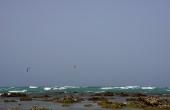 Oman, Masirah-Island_Amq_Kite-Riff