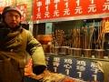 chinapekingspeisenreptilien