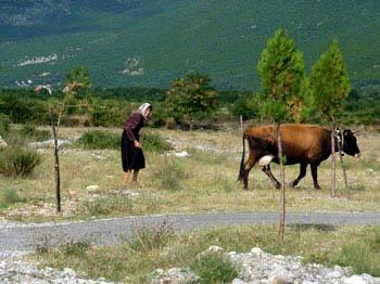Shkodra, Thethi: Bike & Sightseeing durch den Thethi-Nationalpark (Tour 1)
