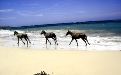 CABARETE + LAS TERRENAS auf der Halbinsel Samana