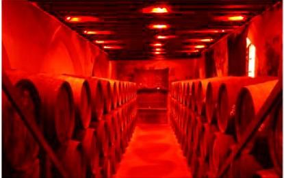 Andalusien, Jerez: Sherry ein Wein so alt wie Phönezien