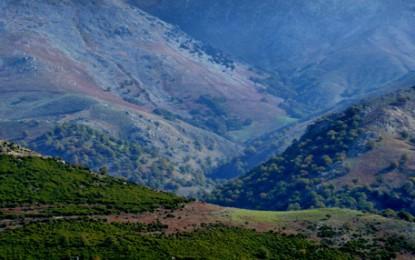 Sardinien, Parco Naturale de Gennergentu: Wandern und Offroaden auf endlosen Forstwegen