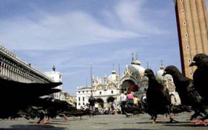 Venedig, La Piazza: Das Ende begehrter Taubenfutter-Dynastien am Markusplatz