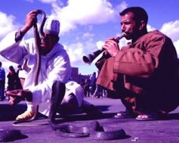 Marrakesch: Eine über den Atlas geworfene Perle des Südens